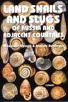 land-snails-slugs-russia
