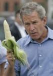 george-bush-will-hit-you-with-corn