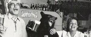 BearBeer